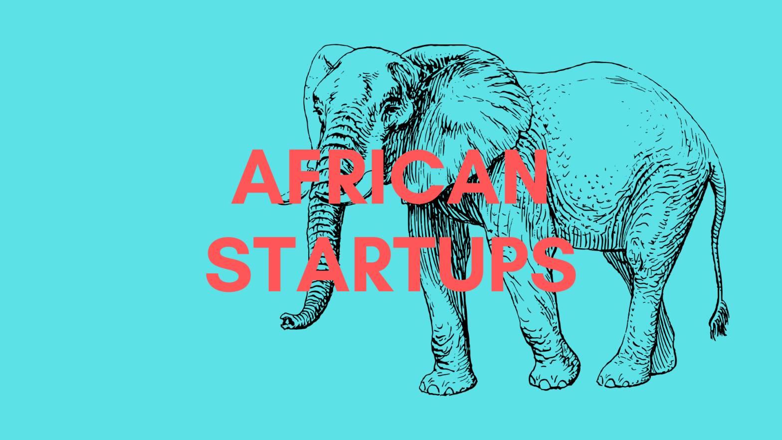 African Startups